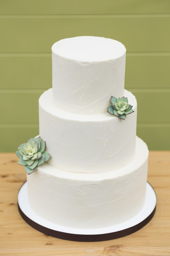 Simple-Succulent-Wedding-Cake-Cassidy-Tuttle-Photography