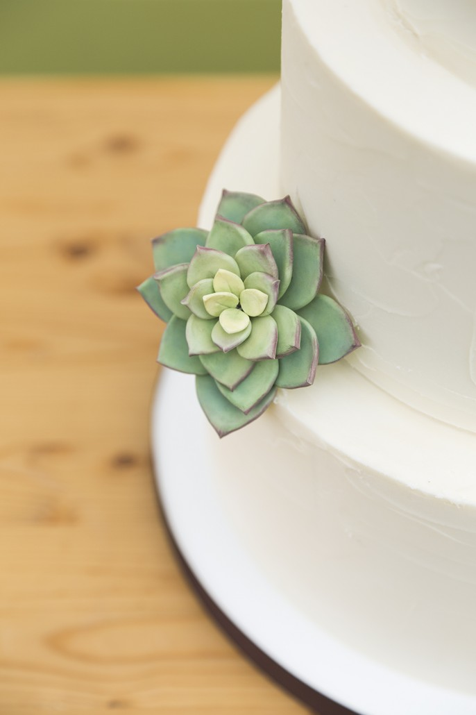 Succulent-Wedding-Cake-Detail-Cassidy-Tuttle-Photography